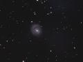 NGC1637