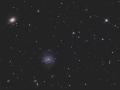 NGC1042